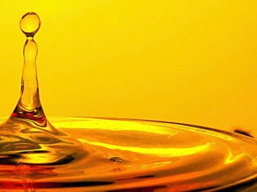 Oil for hydromechanical and hydrostatic transmissions Series P